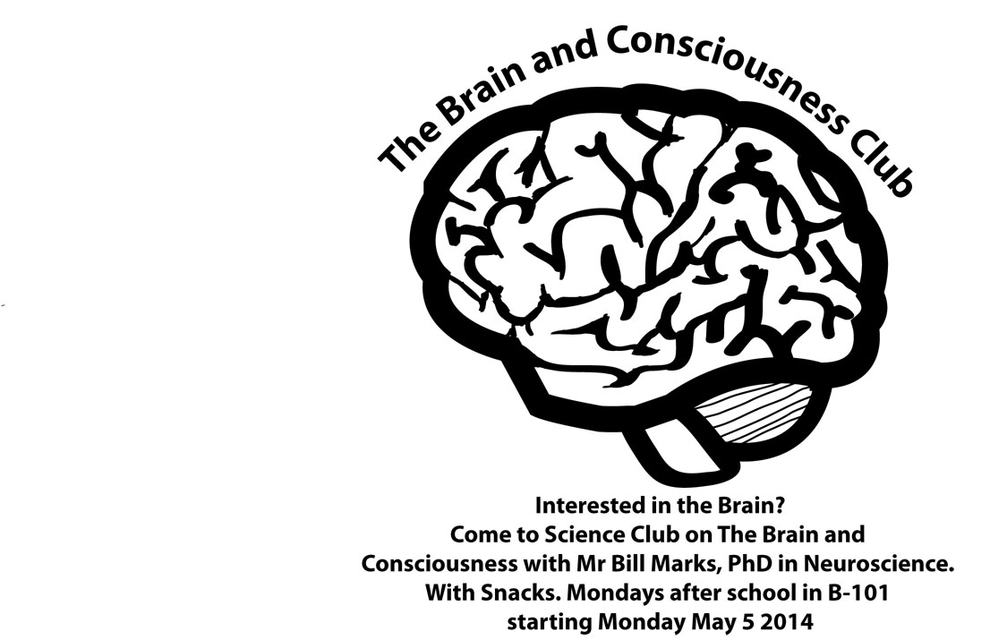 Brain and Consciousness Club Blows Minds
