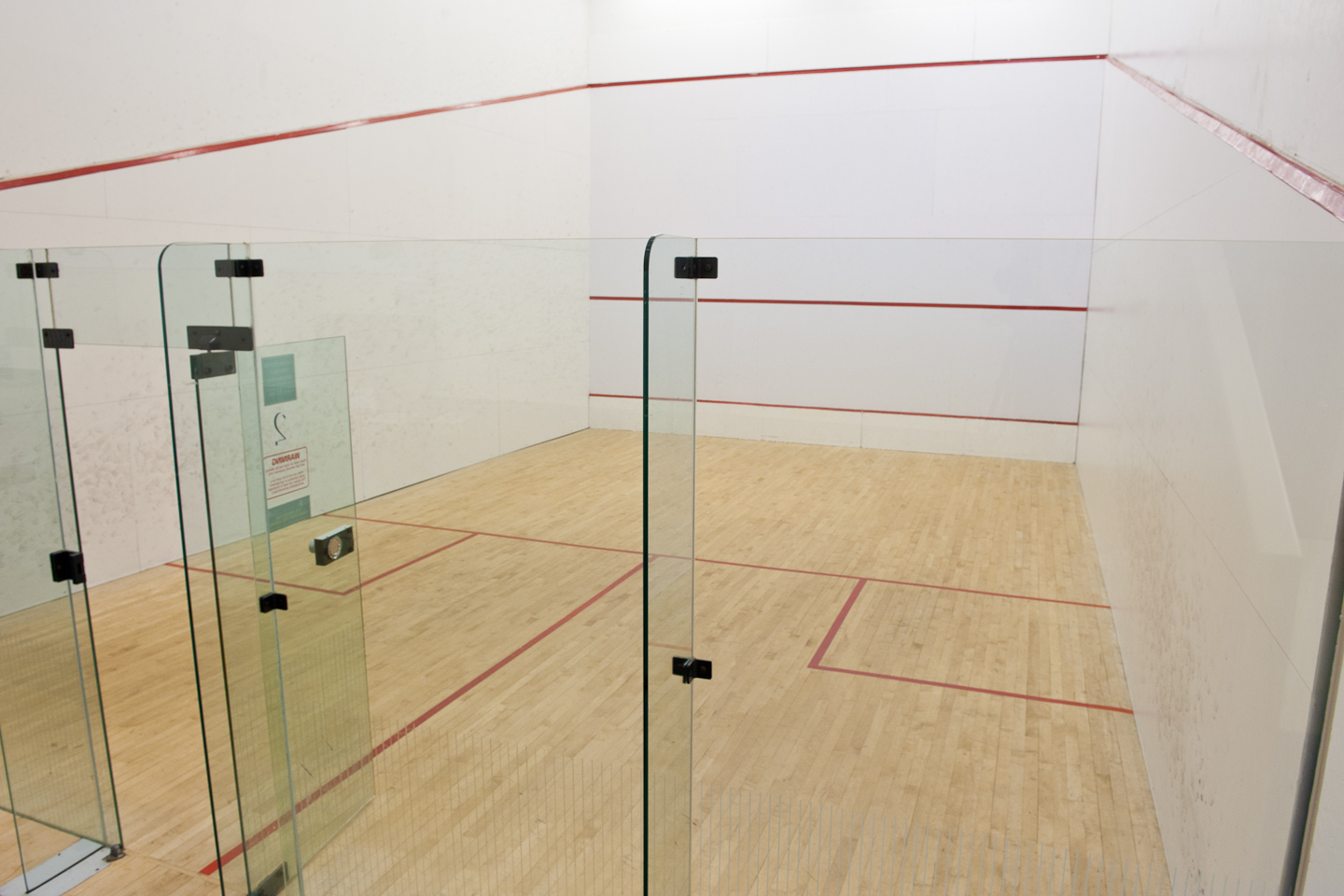 Squash team overcomes early season obstacle, finishes on strong note