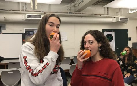 Fruit of the month: persimmons