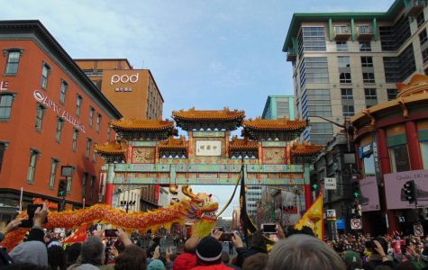Celebrating the Year of the Pig in DC