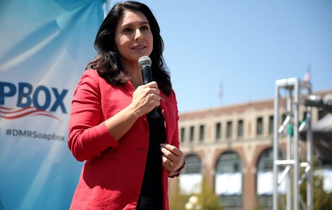 Tulsi Gabbard: A Bigot and a Spoiler in a Democrat's Clothing