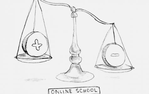 A student's reflection: there are virtually no problems with distance learning