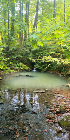 The best DC hiking trails for exercising during quarantine