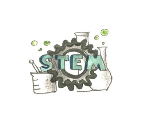 Students combat lack of diversity in STEM classes