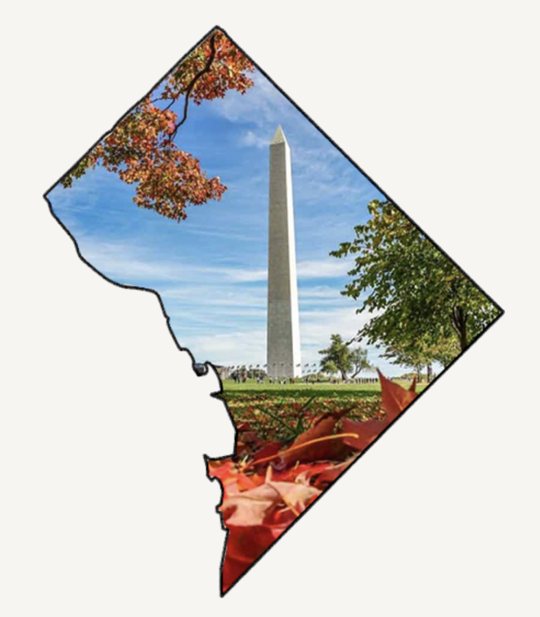 A guide to fall in DC